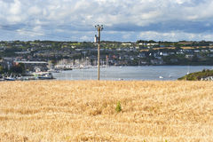Wheat field overlooking fishing village 002 Stock Photo