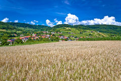 Wheat field and pictoresque mountain village Stock Images