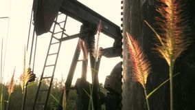 Wheat field with pump jack unit stock footage