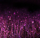 Wheat field and purple bokeh lights. filtered Stock Images