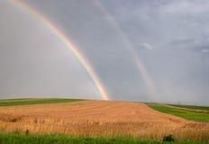 Wheat field with rainbow Stock Photo