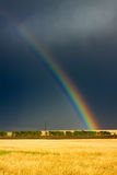Wheat field and rainbow on cloudy sky Royalty Free Stock Photo
