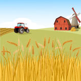 Wheat  field Scene  with tractor. Village with wheat  field and tractor Royalty Free Stock Image
