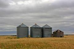 Wheat field and silo Stock Photo