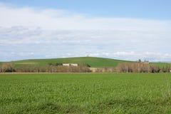 Wheat field in spring. Aude, Occitanie region of France stock photo