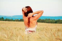 In the wheat field royalty free stock photography