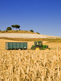 Wheat field and tractor. Typical summer image. Harvesting series Royalty Free Stock Photos