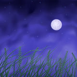 Wheat field under full moon Stock Photo