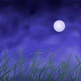 Wheat field under full moon. At night Stock Photo