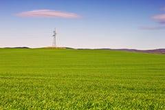 Wheat field valley Stock Photo