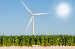 Wheat field with windmill background Stock Photos