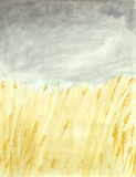 Wheat fields. Acrylic illustration of wheat fields Stock Photography