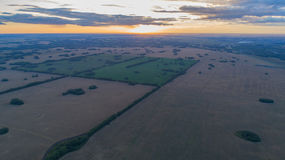 Wheat fields. Beautiful scenery from a height in sunset time. Photos from the height Royalty Free Stock Photo