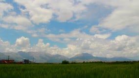 Wheat fields, clouds time lapse, june 2016, Turkey stock video