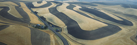 Wheat Fields and Contour Farming, S.E. Washington Stock Photos