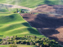 Wheat fields contour the Palouse hills Stock Images