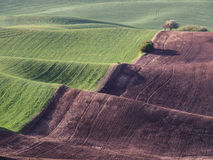 Wheat fields contour the Palouse hills Stock Photo