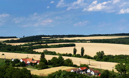 Wheat fields landscape in summer time Stock Image