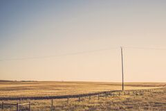 Wheat Fields with Overhead Power Line Royalty Free Stock Photo