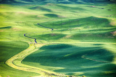 Wheat Fields In The Palouse Stock Photography