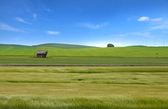 Wheat fields in Palouse,WA Royalty Free Stock Photography
