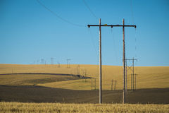 Wheat fields, power lines, eastern Washington Stock Photography