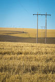Wheat fields, power lines, eastern Washington Royalty Free Stock Photos