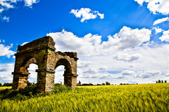 Wheat Fields with ruin Stock Photos