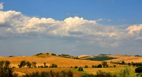 Wheat fields in Tuscany, Italy Stock Image