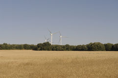 Wheat fields, wind turbines, integrated food energy production Stock Images