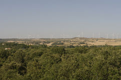 Wheat fields, wind turbines, integrated food energy production Royalty Free Stock Photography