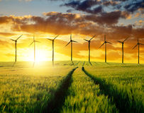 Wheat fields with wind turbines Royalty Free Stock Photography