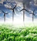 Wheat Fields With Wind Turbines Royalty Free Stock Image