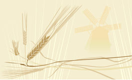 Wheat fileld whith windmill Royalty Free Stock Images
