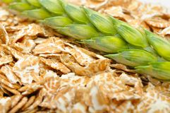 Wheat Flakes and Ear of Wheat Royalty Free Stock Photos