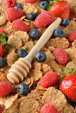 Wheat flakes with fresh berries Royalty Free Stock Image