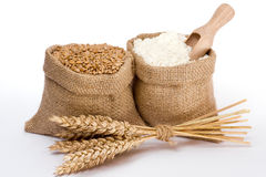 Wheat and flour. Flour and wheat grain in small burlap sack Stock Image