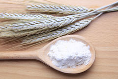 Wheat and flour Royalty Free Stock Images