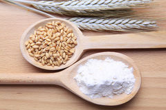 Wheat and flour Stock Photography