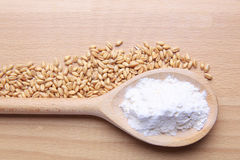 Wheat and flour Royalty Free Stock Image