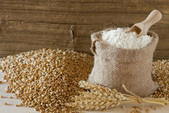 Wheat and flour. Wheat seed and flour in burlap sack Royalty Free Stock Images