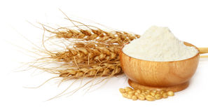 Wheat and flour on a bowl Royalty Free Stock Images