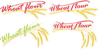 Wheat flour compositions. For all design conditions Royalty Free Stock Images