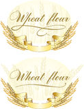 Wheat flour design Stock Images