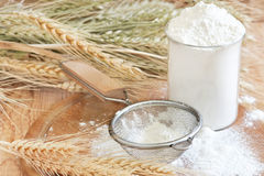 Wheat flour. In glass, sifter and grains. Selective focus Royalty Free Stock Photography