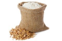 Wheat flour Stock Images