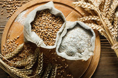 Wheat and flour Royalty Free Stock Photography