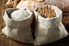 Wheat and flour Stock Images