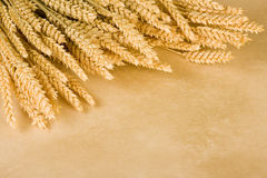 Wheat frame. Border frame made of a bunch of wheat and parchment background Royalty Free Stock Photo