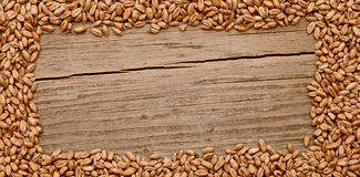 Wheat frame Stock Photos